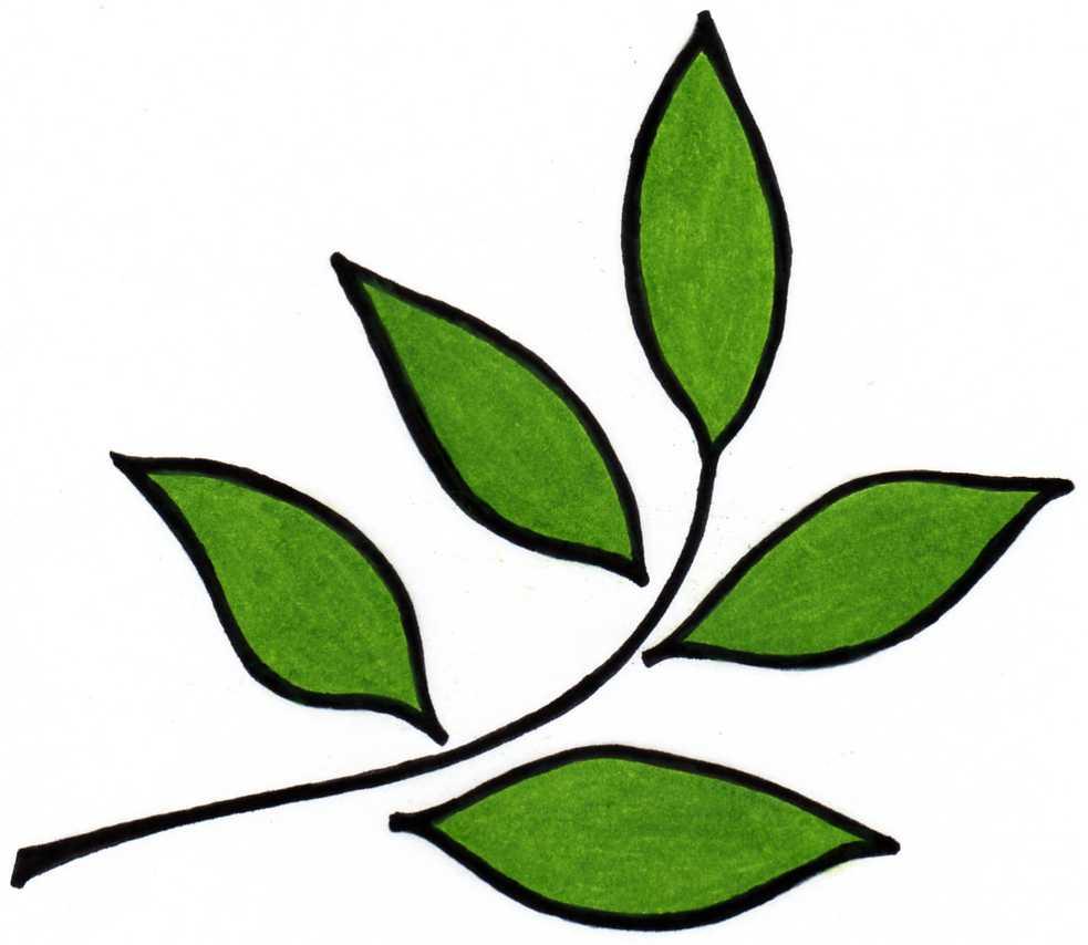 new leaf design logo - Garden Design Services